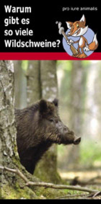 """Flyer """"Wildschweinpopulation"""""""